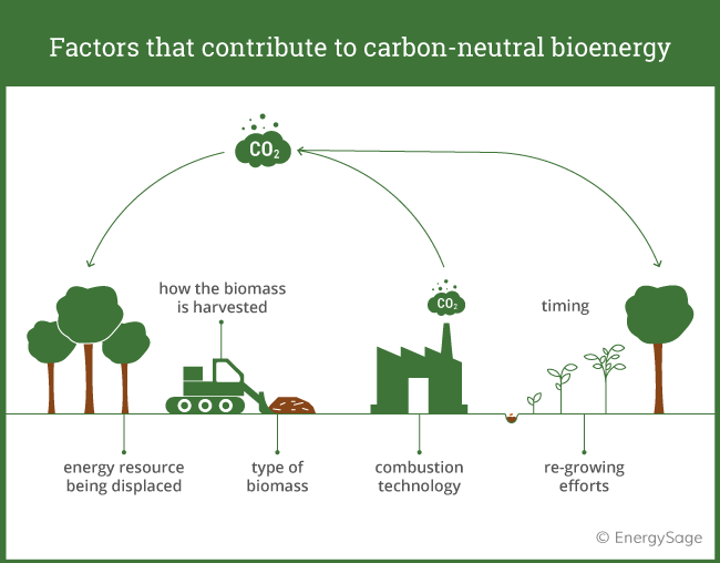 factors in how carbon neutral bioenergy is